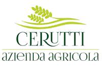 Local-to-You-Logo-Cerruti