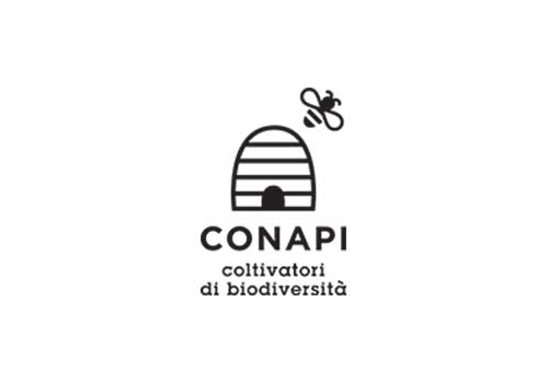 conapi-2